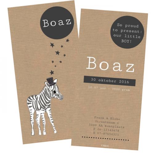 geboortekaartje-zebra-boaz