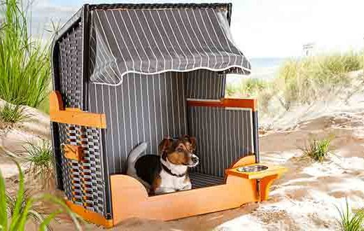 strandkorf voor honden